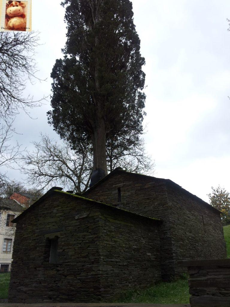 20130406 173346 768x1024 - Monasterio de Samos - Lugo
