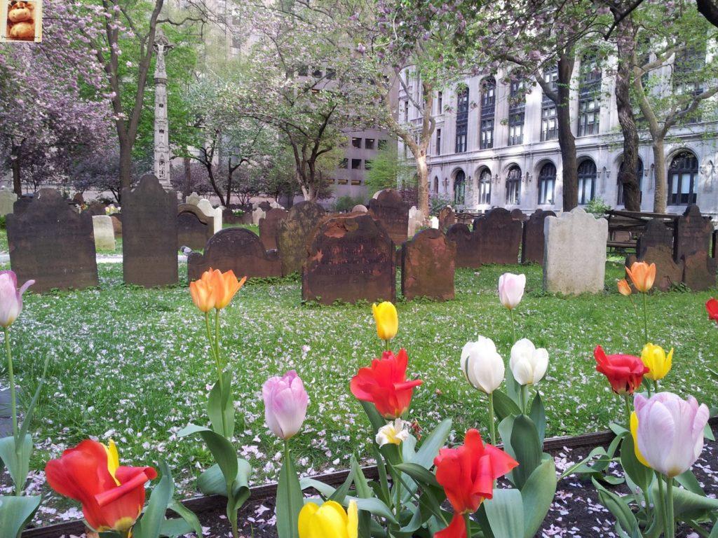 Image00019 1 1024x768 - Día 2: Nueva York (Lower/Dowtown Manhattan)