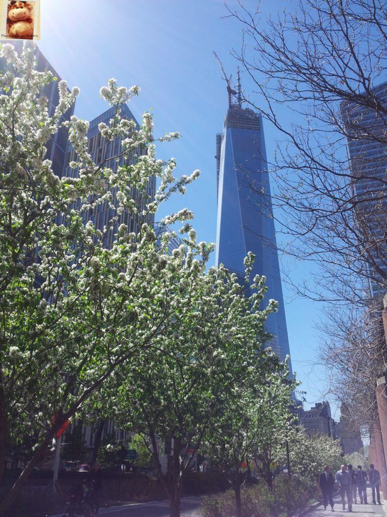Image00037 768x1024 - Día 2: Nueva York (Lower/Dowtown Manhattan)