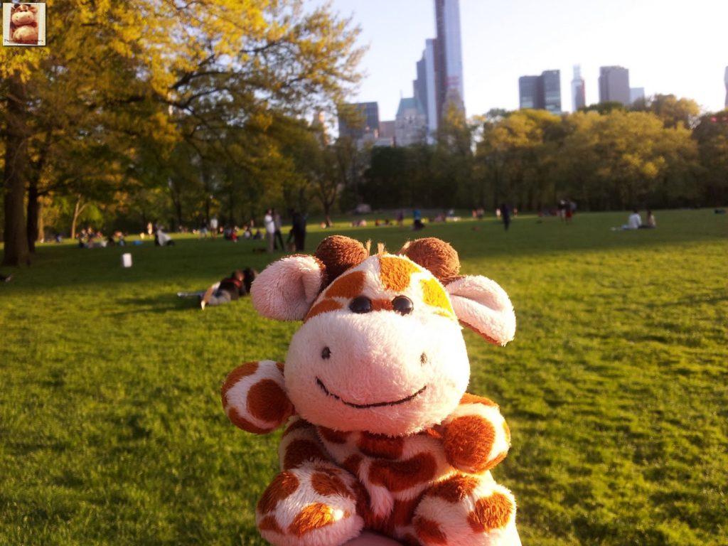 Image00003 1024x768 - Día 5: Nueva York (museos y Central Park)