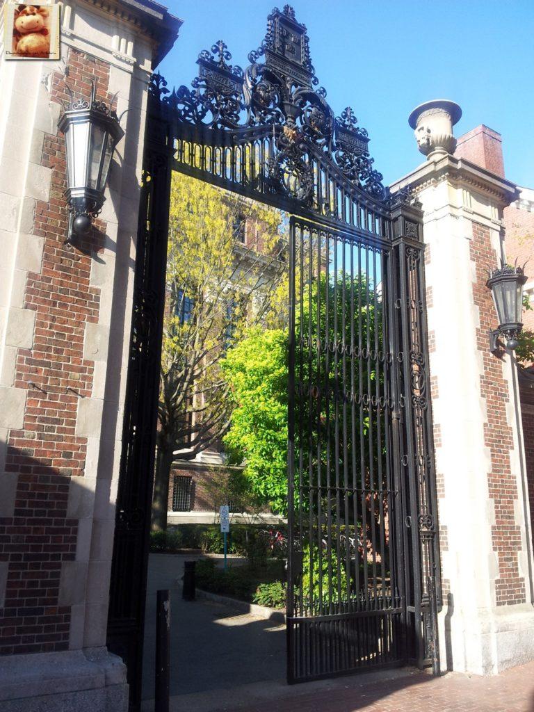Image00005 3 768x1024 - Día 7: Nueva York - Cambridge - Boston