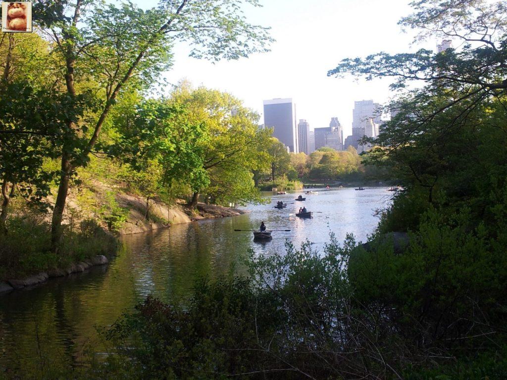 Image00007 1024x768 - Día 5: Nueva York (museos y Central Park)