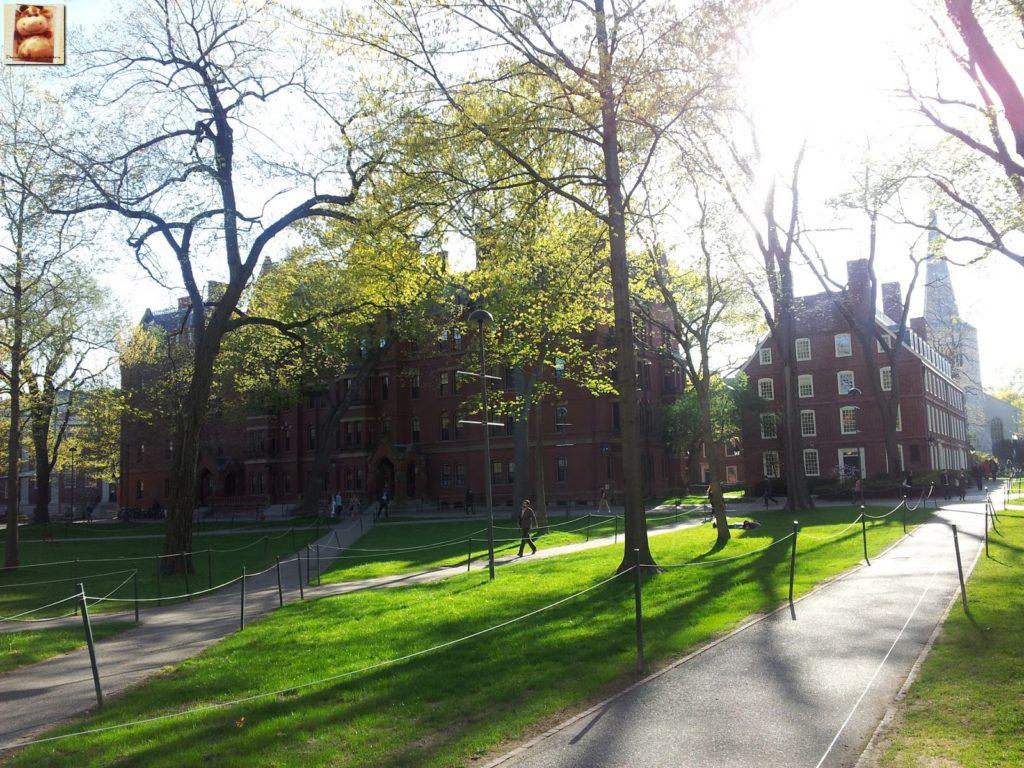 Image00007 3 1024x768 - Día 7: Nueva York - Cambridge - Boston