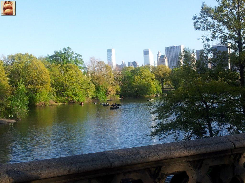 Image00008 1024x768 - Día 5: Nueva York (museos y Central Park)