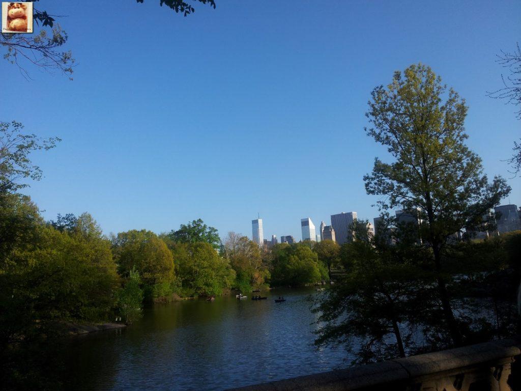 Image00009 1024x768 - Día 5: Nueva York (museos y Central Park)