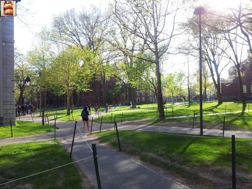 Image00009 3 1024x768 - Día 7: Nueva York - Cambridge - Boston