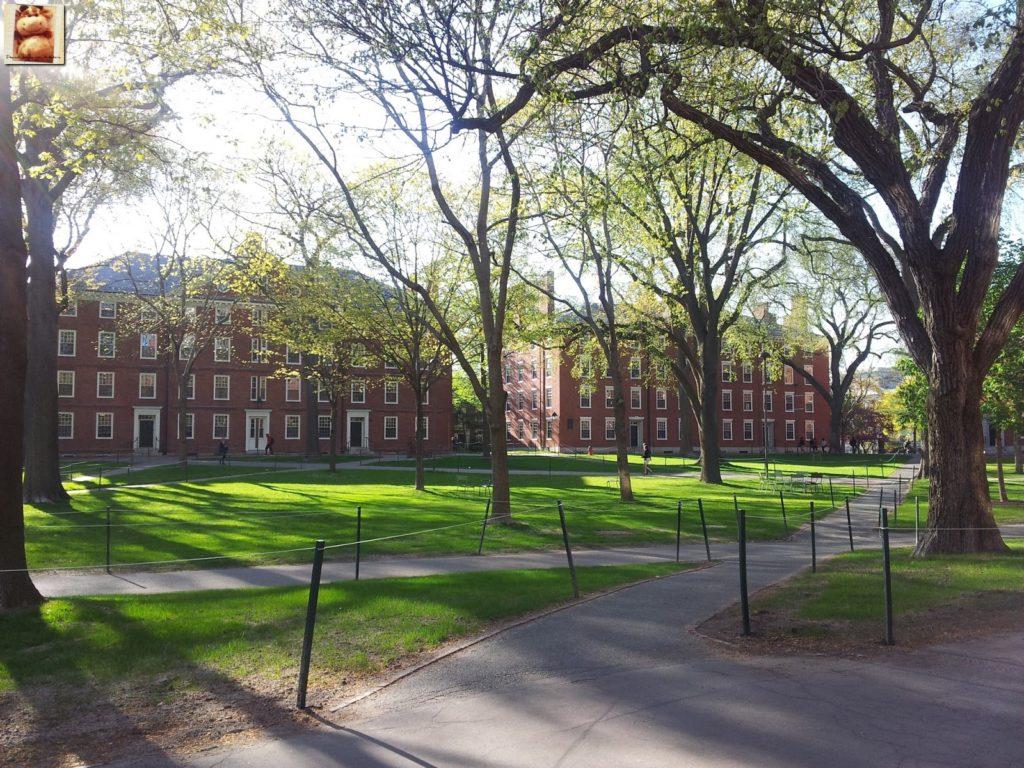 Image00010 3 1024x768 - Día 7: Nueva York - Cambridge - Boston