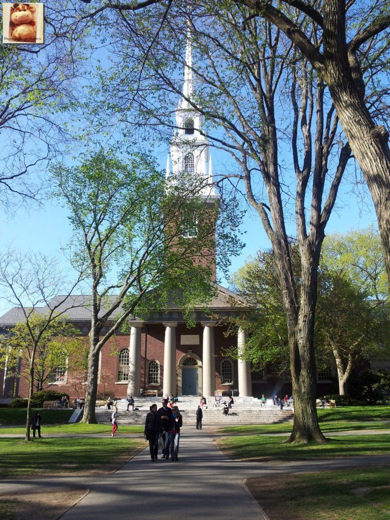 Image00013 3 768x1024 - Día 7: Nueva York - Cambridge - Boston