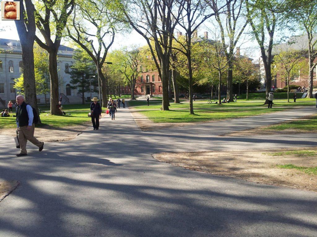 Image00014 3 1024x768 - Día 7: Nueva York - Cambridge - Boston