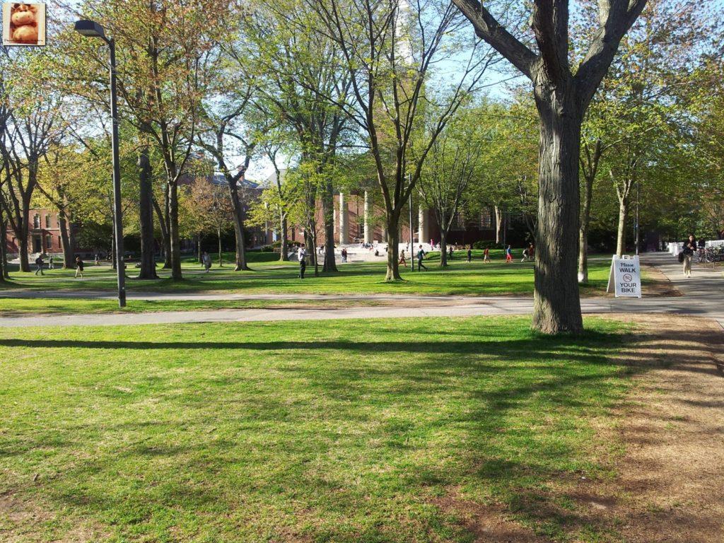 Image00016 3 1024x768 - Día 7: Nueva York - Cambridge - Boston