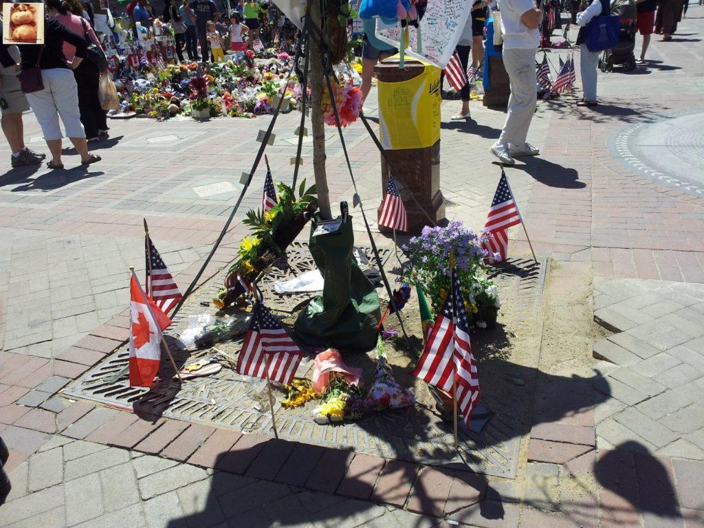 Image00016 4 1024x768 - Qué ver en Boston en 1 día