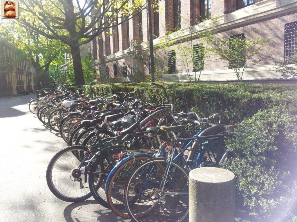 Image00017 4 1024x768 - Día 7: Nueva York - Cambridge - Boston