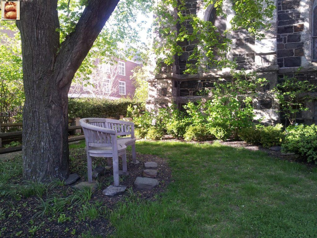 Image00018 2 1024x768 - Día 7: Nueva York - Cambridge - Boston
