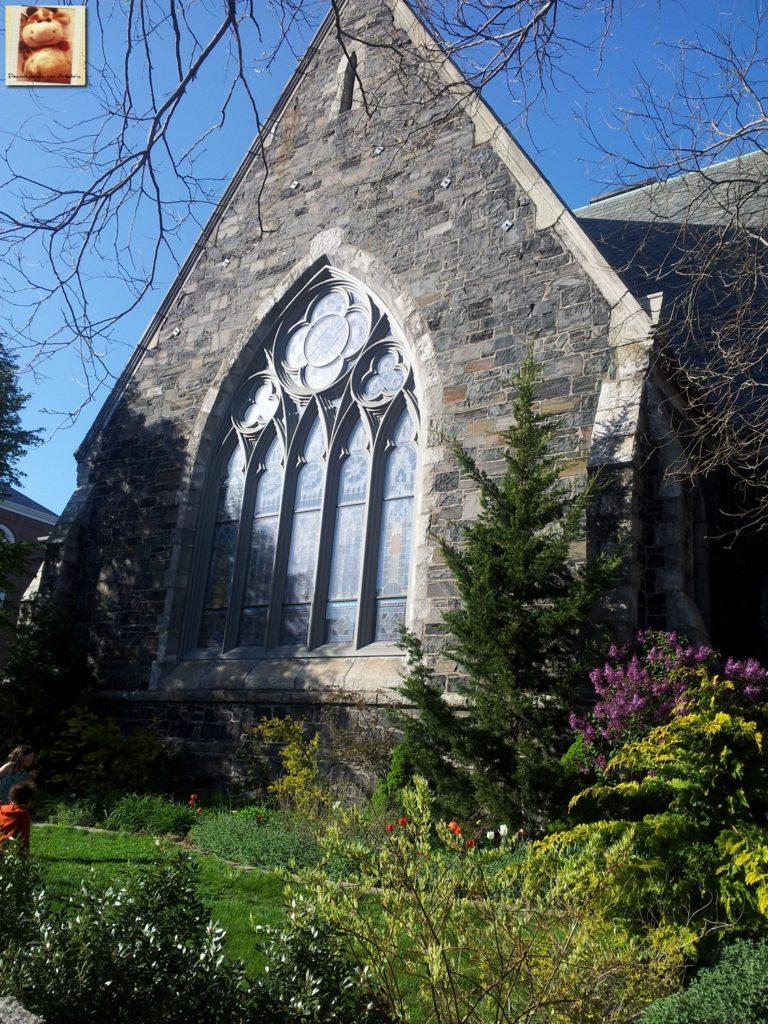 Image00019 2 768x1024 - Día 7: Nueva York - Cambridge - Boston
