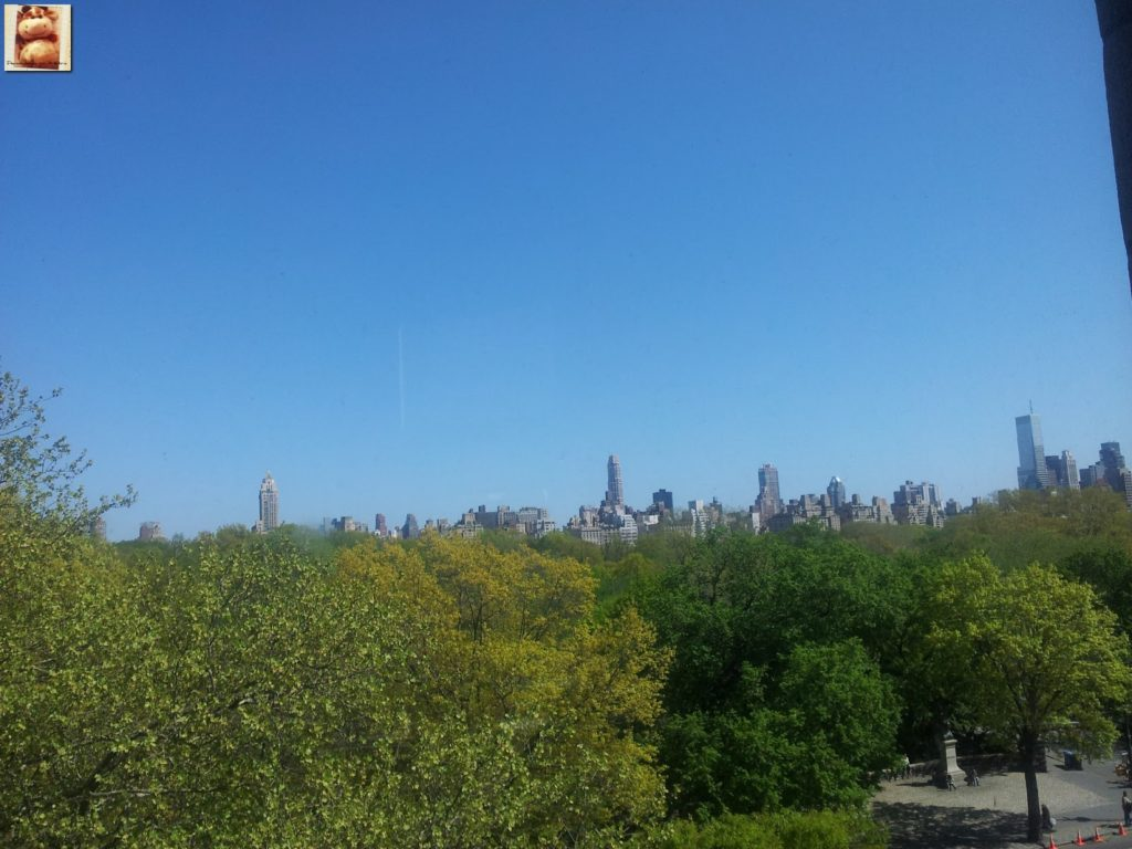 Image00020 1024x768 - Día 5: Nueva York (museos y Central Park)