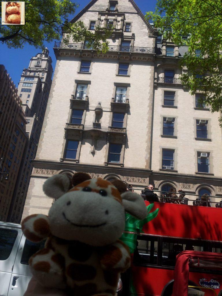 Image00031 768x1024 - Día 5: Nueva York (museos y Central Park)