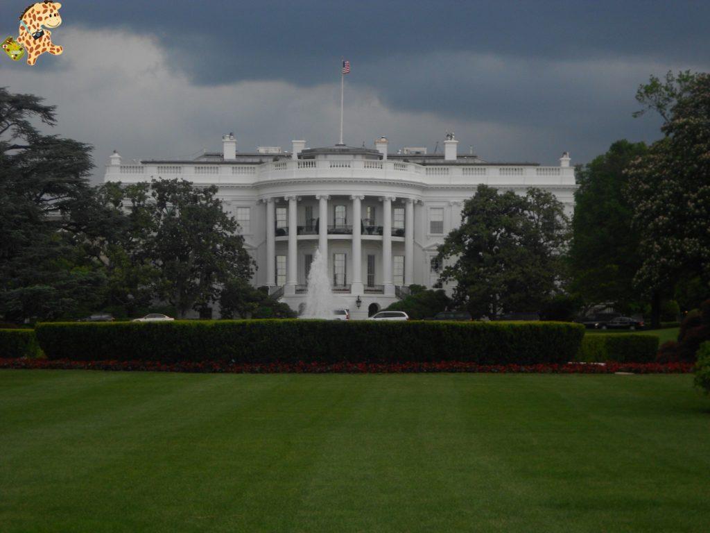 11mayo 283029 1024x768 - De las cataratas del Niágara a Washington D.C.