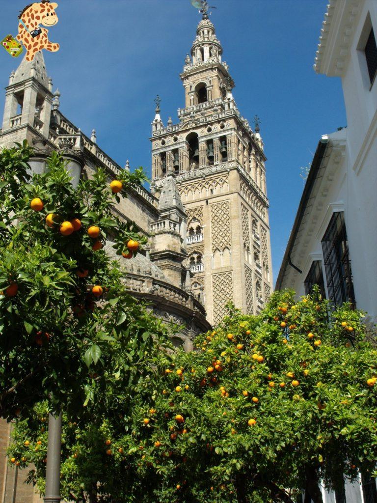 sevilla 282229 768x1024 - Cinco visitas imprescindibles en Sevilla