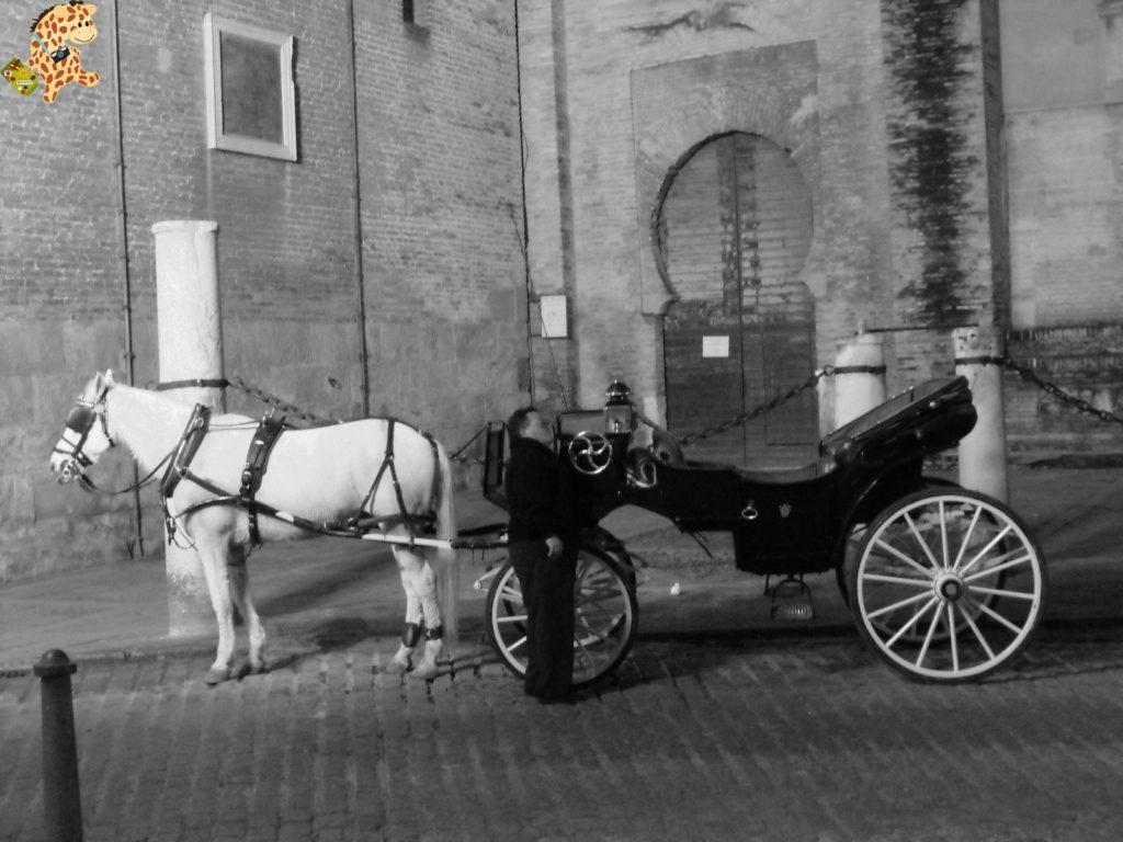 sevilla 28329 1024x768 - Cinco visitas imprescindibles en Sevilla