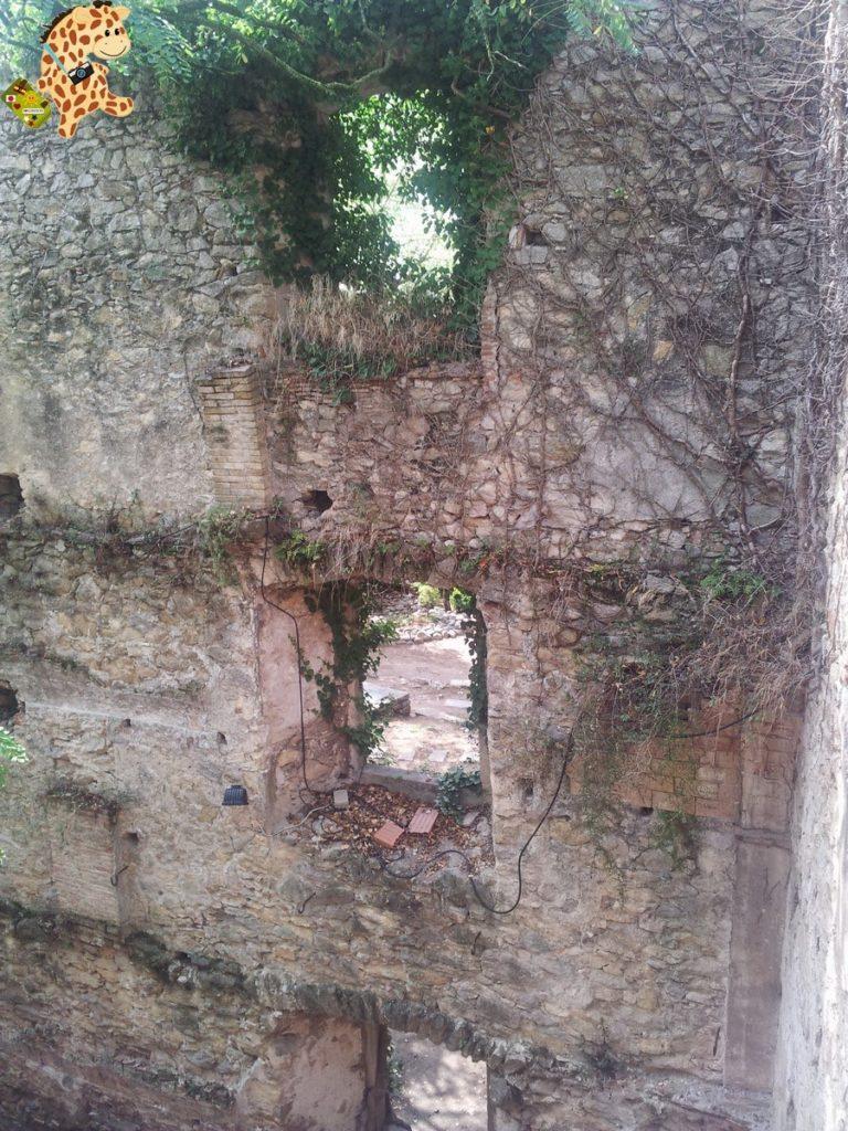 20130908 124130 768x1024 - Qué ver en Girona en un día?