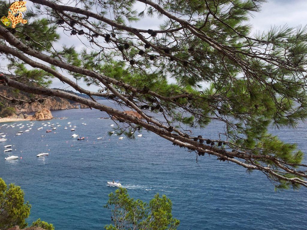 20130909 120216 1024x768 - Qué ver en la Costa Brava (I)