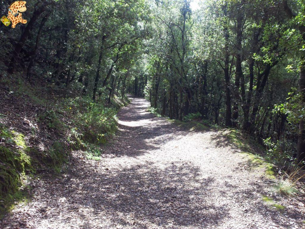 20130912 122756 1024x768 - La Garrotxa - Rutas de senderismo