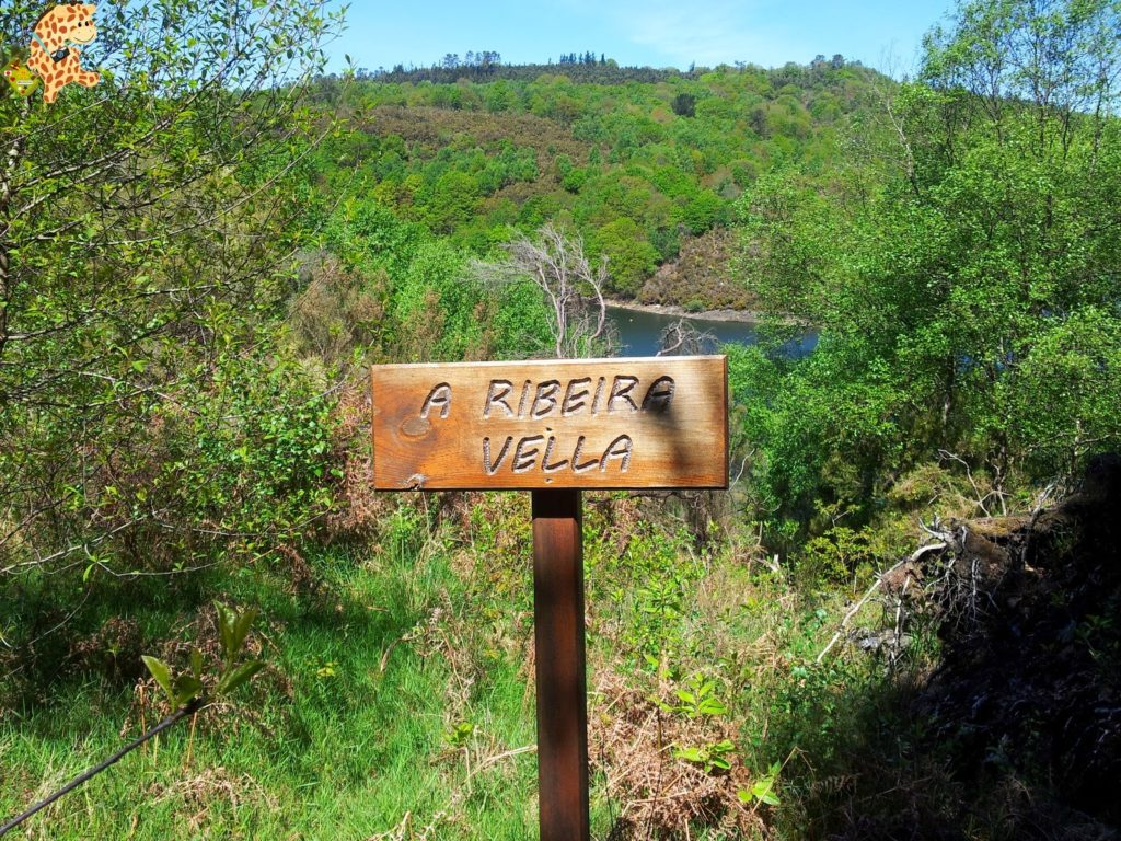 20140503 134454 1024x768 - PR-G 147 As Fragas de Ribeira e Lostegal (As Pontes)