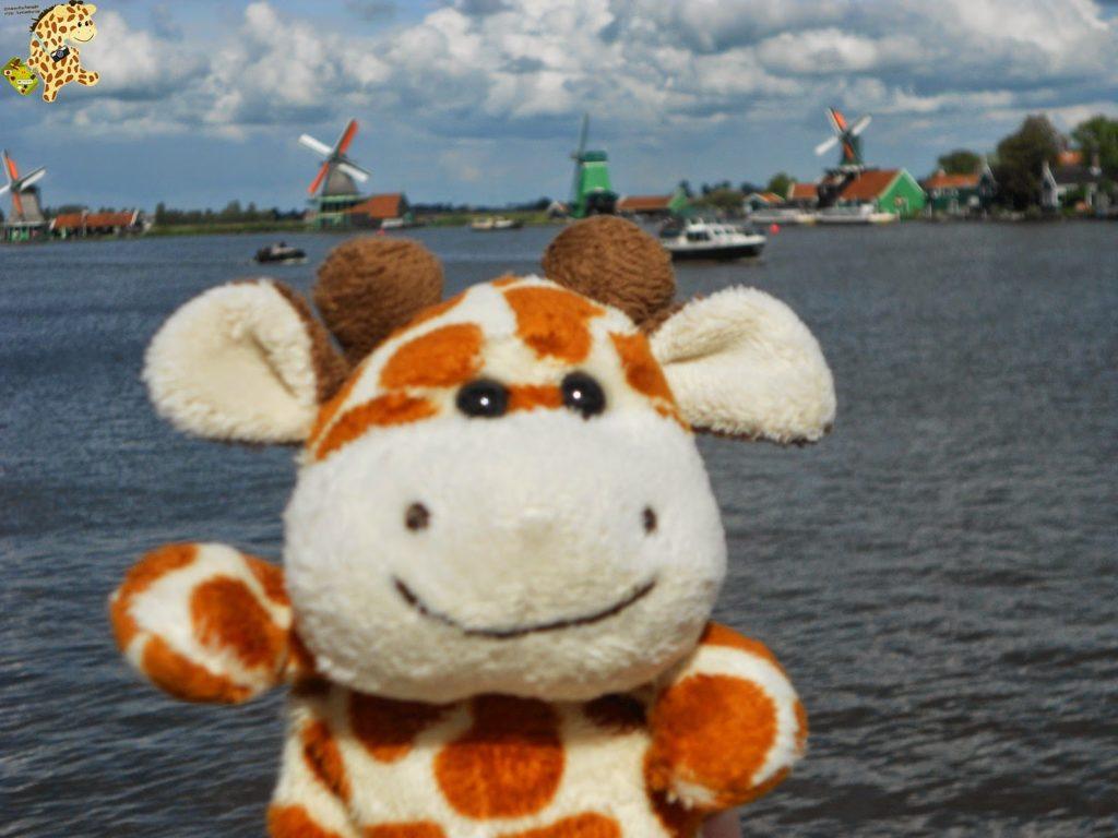 DSCN1384 1024x768 - Holanda y Bélgica en 1 semana. Itinerario y presupuesto