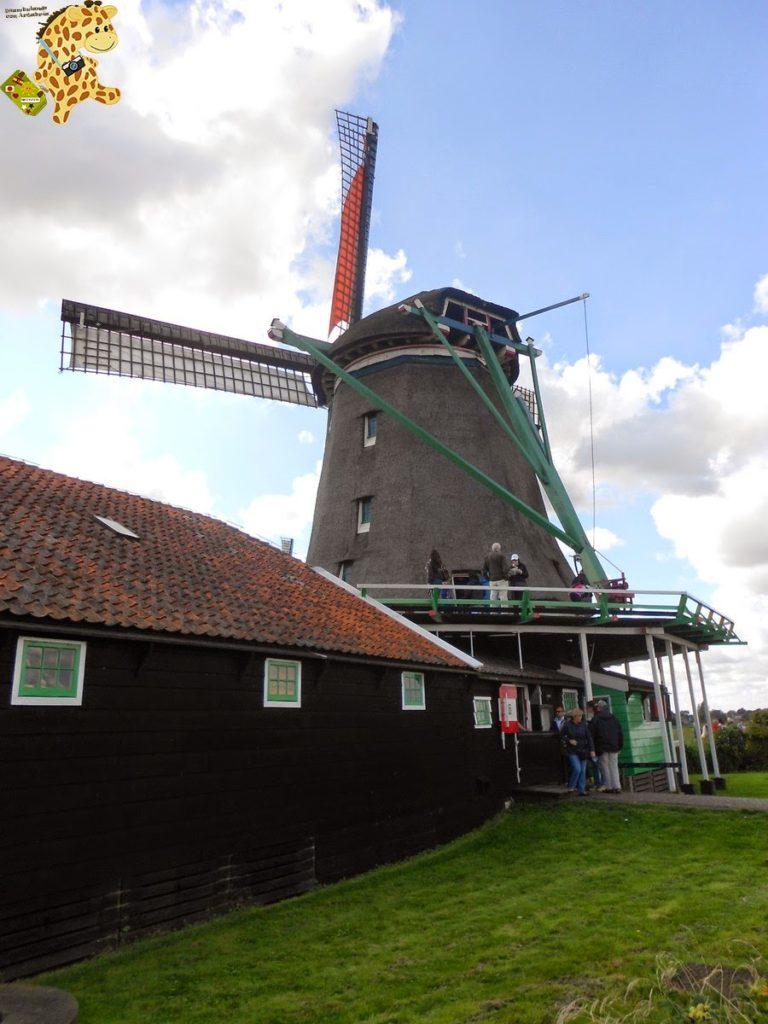 DSCN1404 768x1024 - Qué ver en Amsterdam en 2 días? (I)