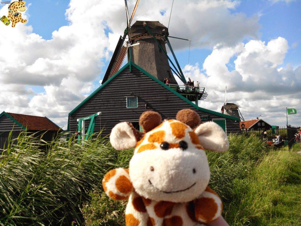 IMG 20140824 165039 1024x768 - Holanda y Bélgica en 1 semana. Itinerario y presupuesto