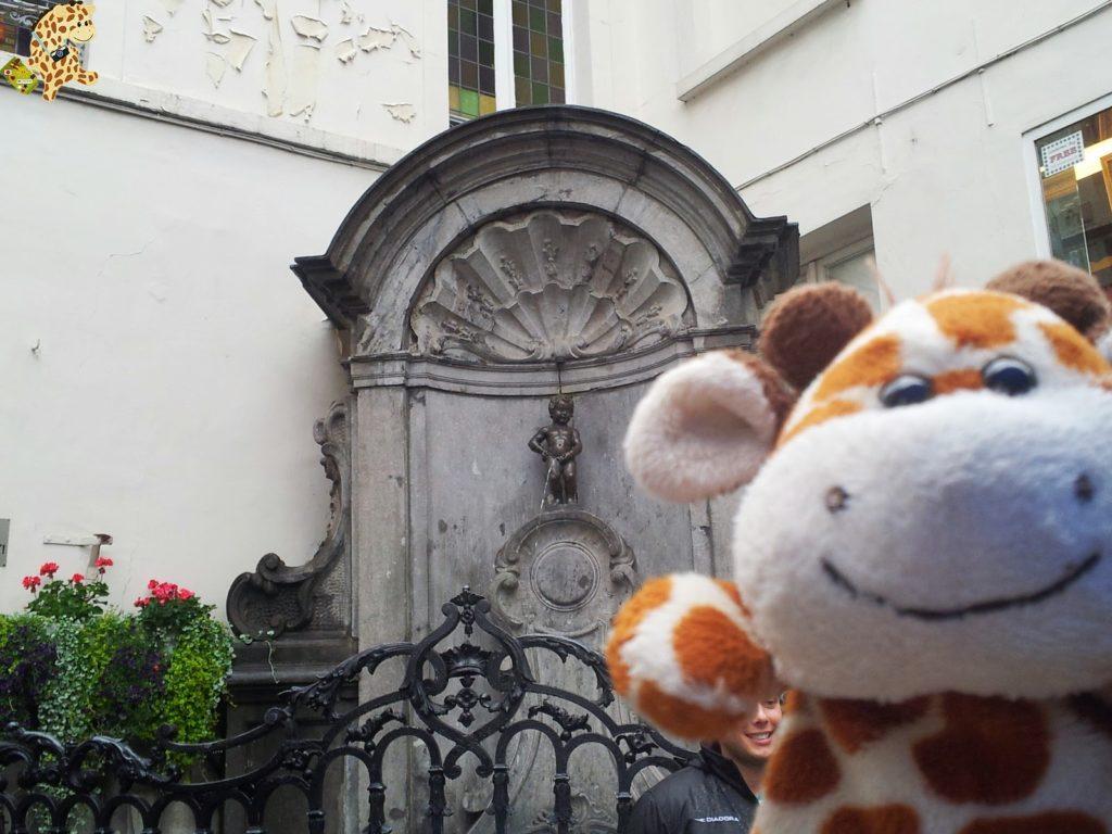 20140826 120551 1024x768 - Qué ver en Bruselas?
