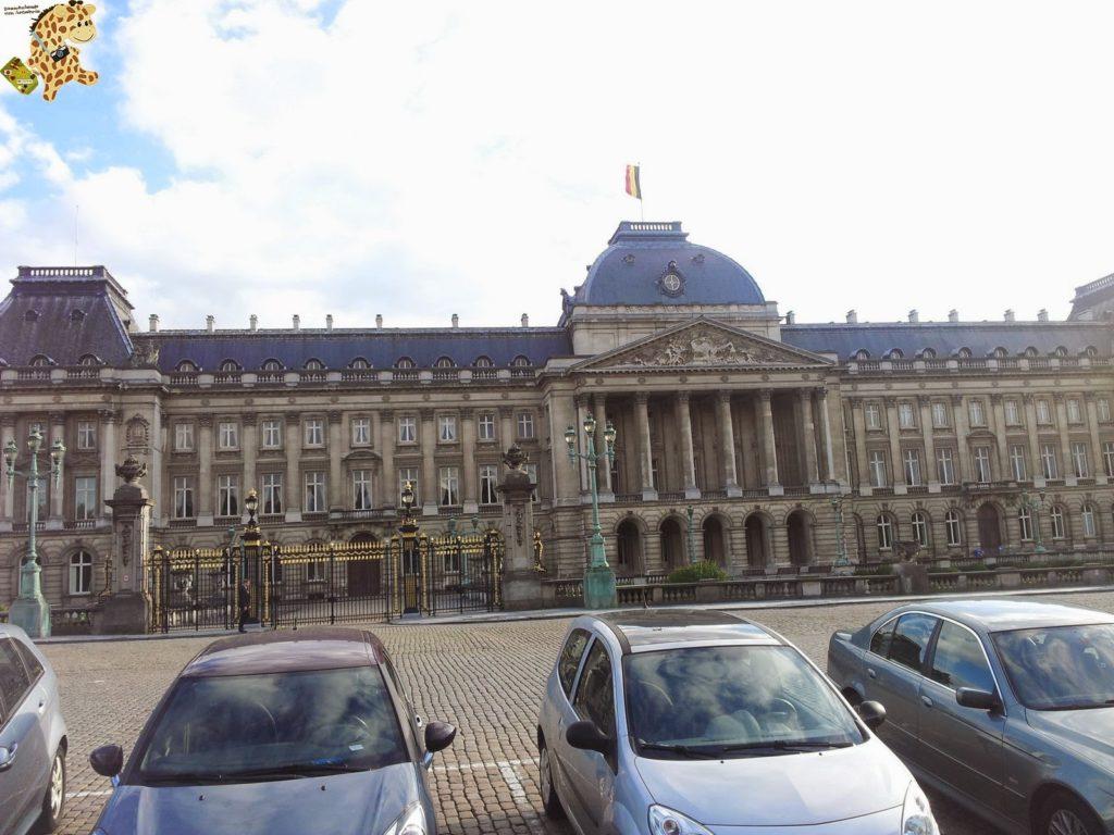 20140829 184518 1024x768 - Qué ver en Bruselas?