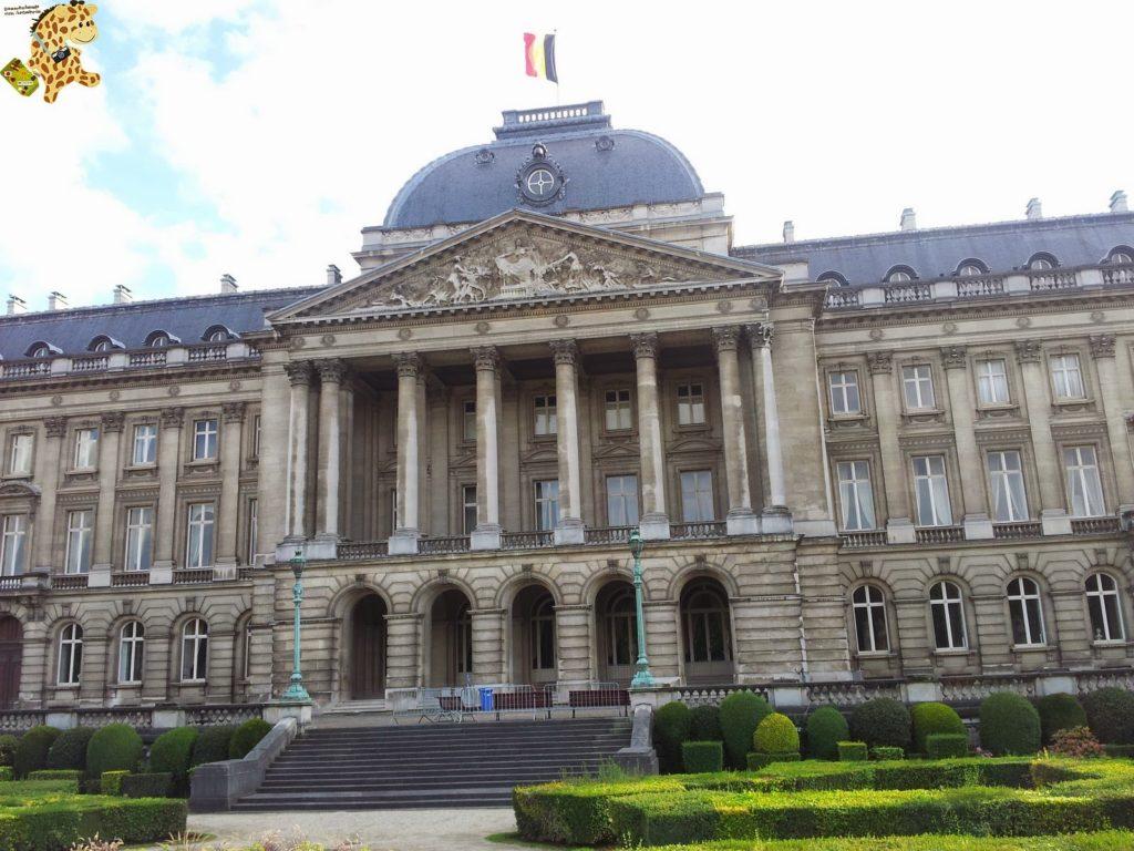20140829 184652 1024x768 - Qué ver en Bruselas?