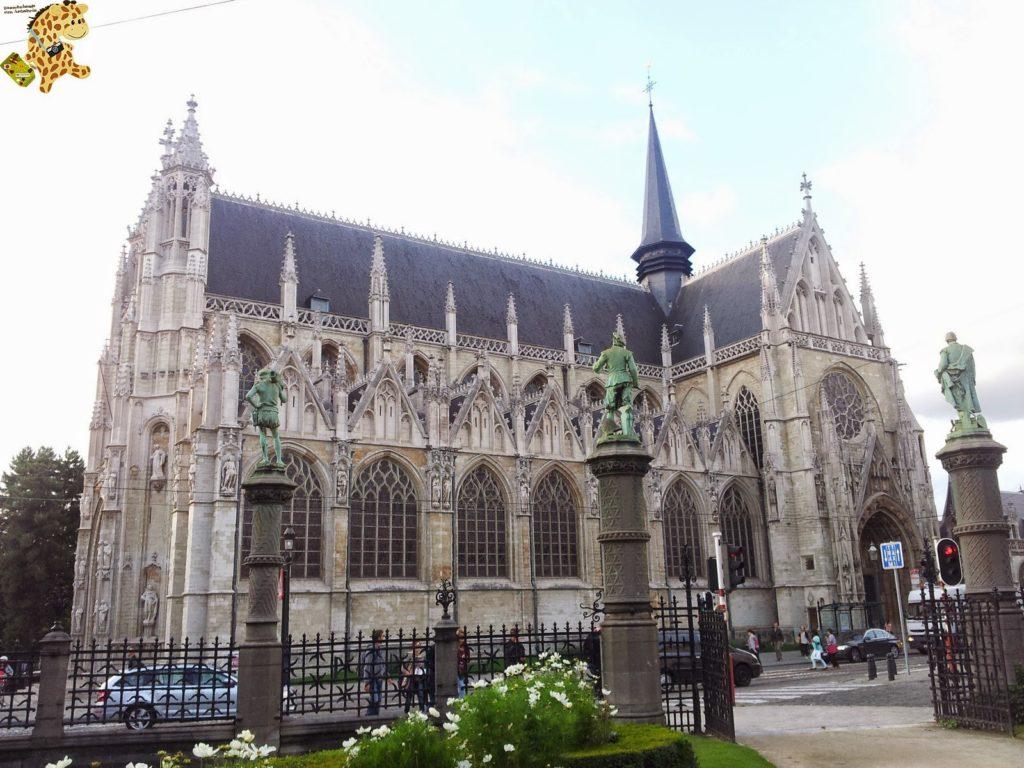 20140829 190322 1024x768 - Qué ver en Bruselas?