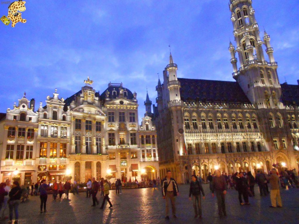 DSCN1438 1024x768 - Qué ver en Bruselas?