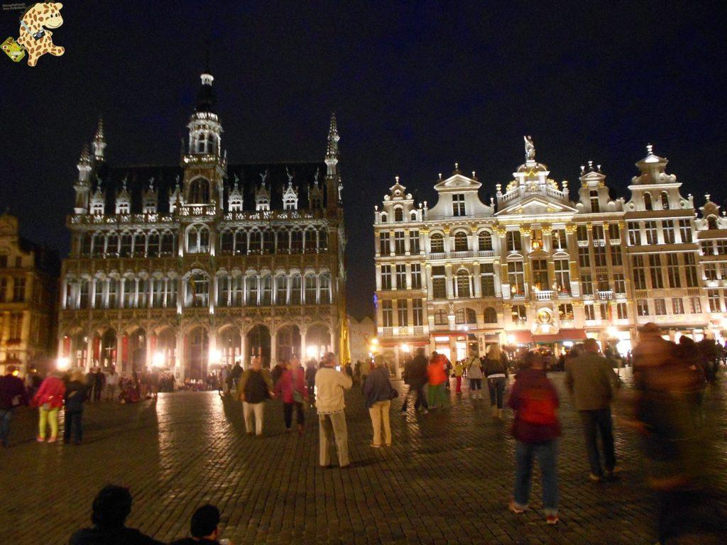 DSCN1459 1024x768 - Qué ver en Bruselas?