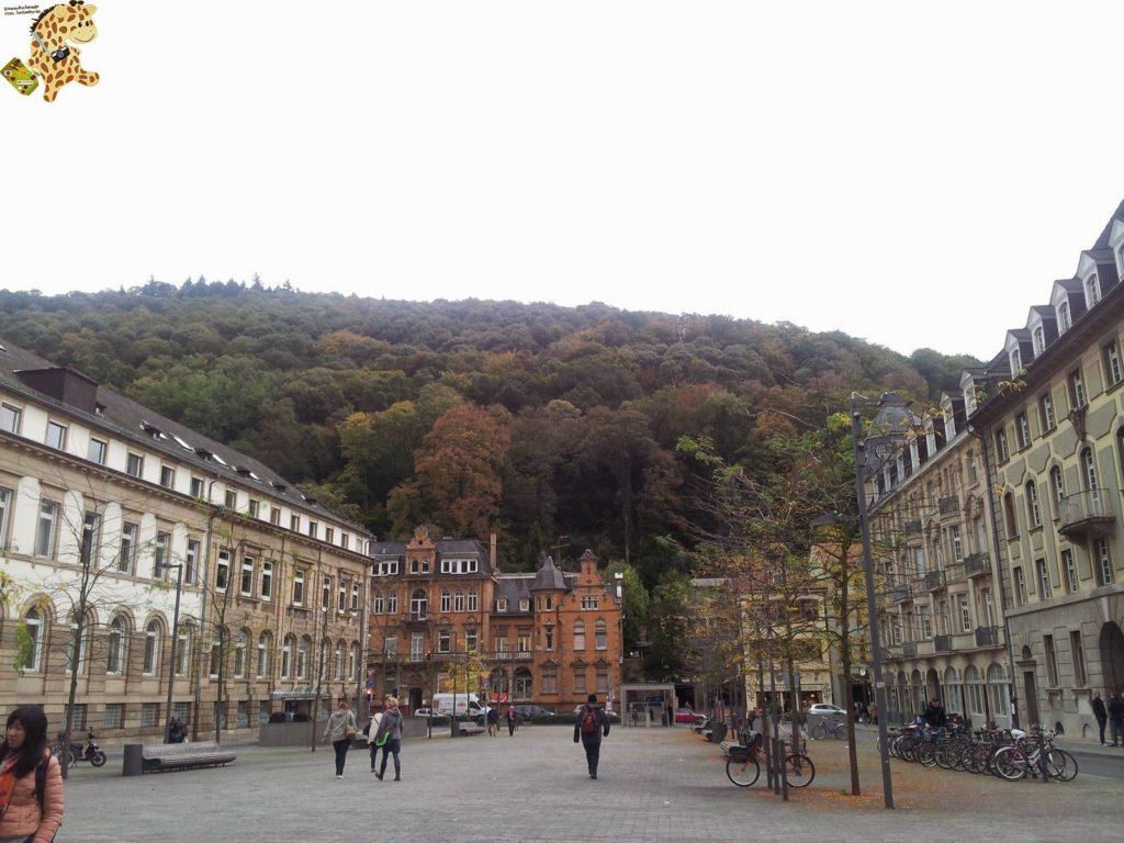 20141022 125446 1024x768 - Qué ver en Heidelberg - Alemania