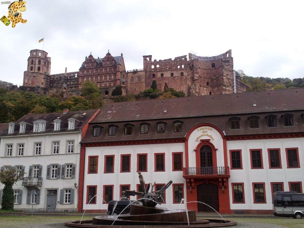 20141022 132914 1024x768 - Qué ver en Heidelberg - Alemania