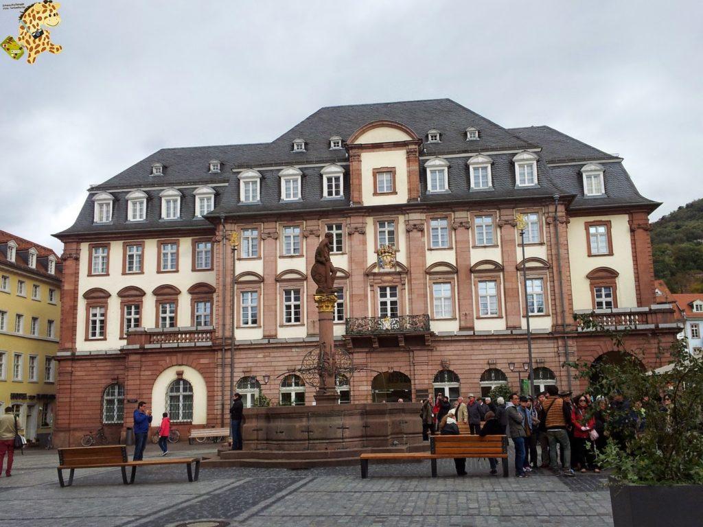 20141022 152157 1024x768 - Qué ver en Heidelberg - Alemania