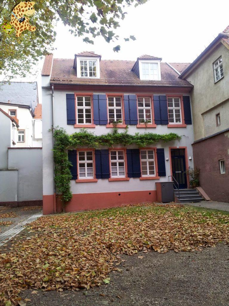 20141022 153105 768x1024 - Qué ver en Heidelberg - Alemania