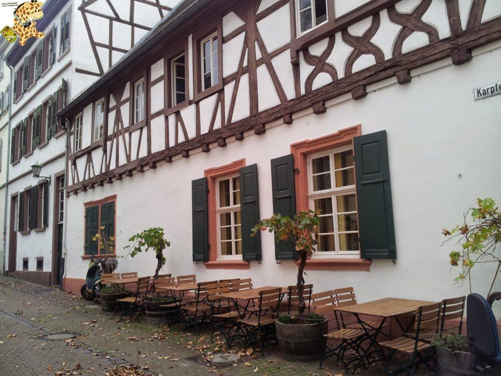 20141022 154325 1024x768 - Qué ver en Heidelberg - Alemania