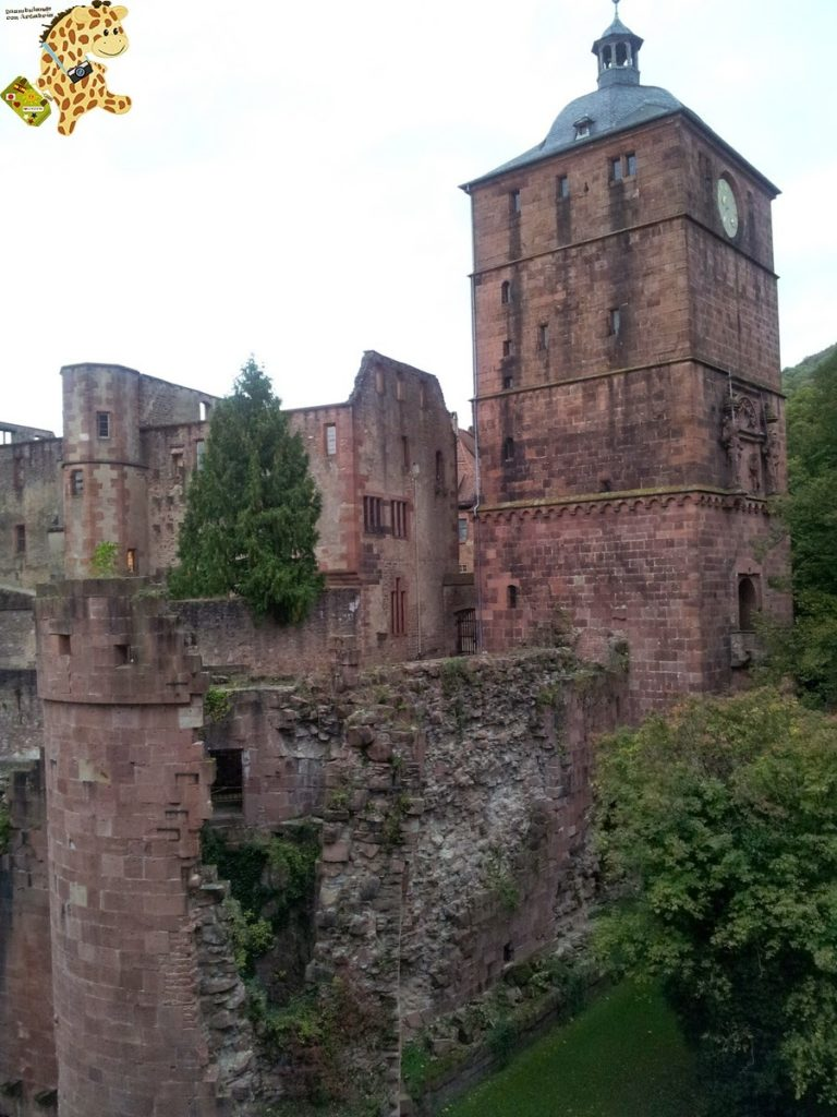 20141022 163734 768x1024 - Qué ver en Heidelberg - Alemania
