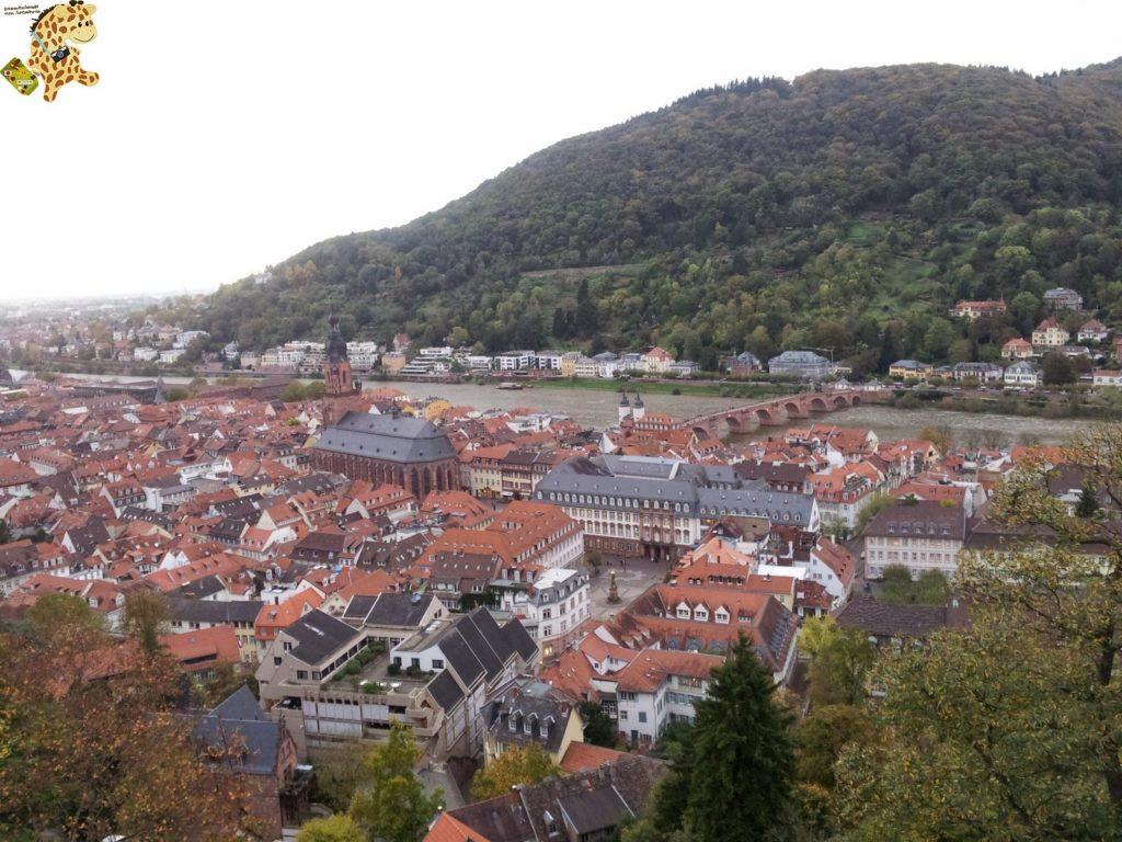 20141022 163945 1024x768 - Qué ver en Heidelberg - Alemania