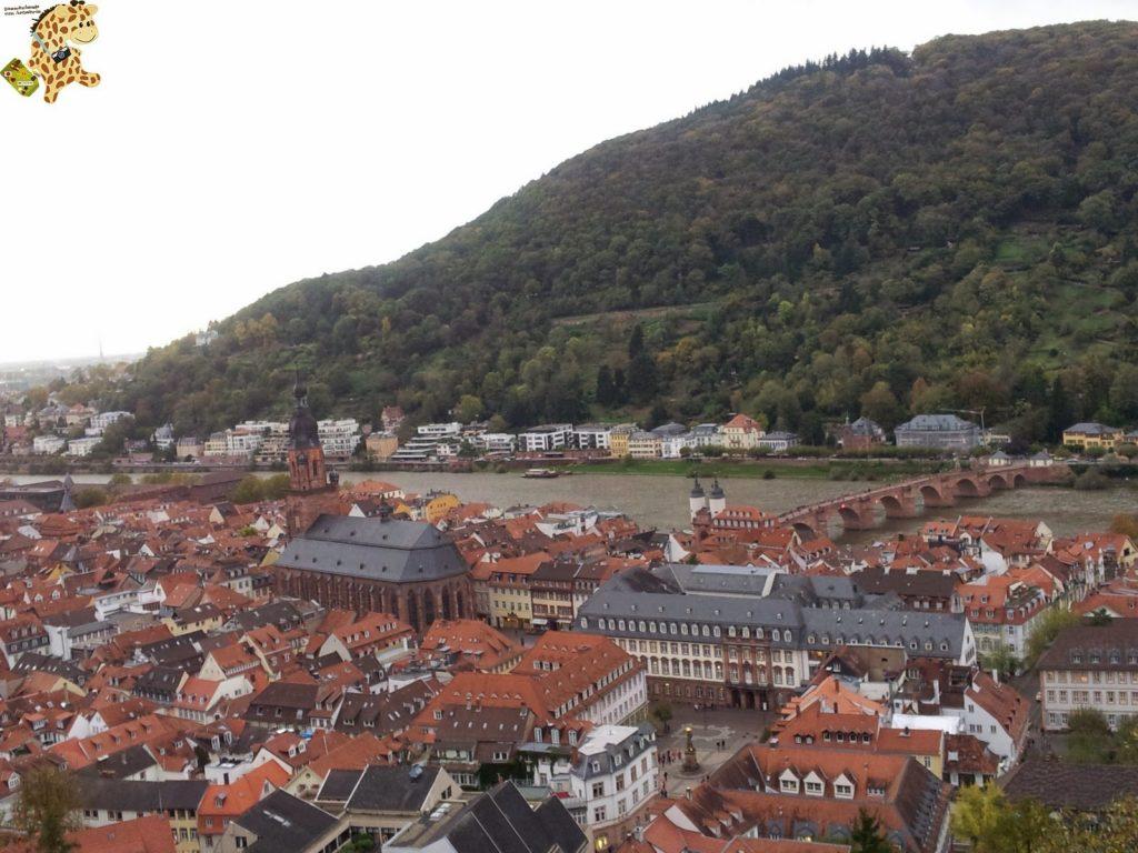 20141022 164053 1024x768 - Qué ver en Heidelberg - Alemania