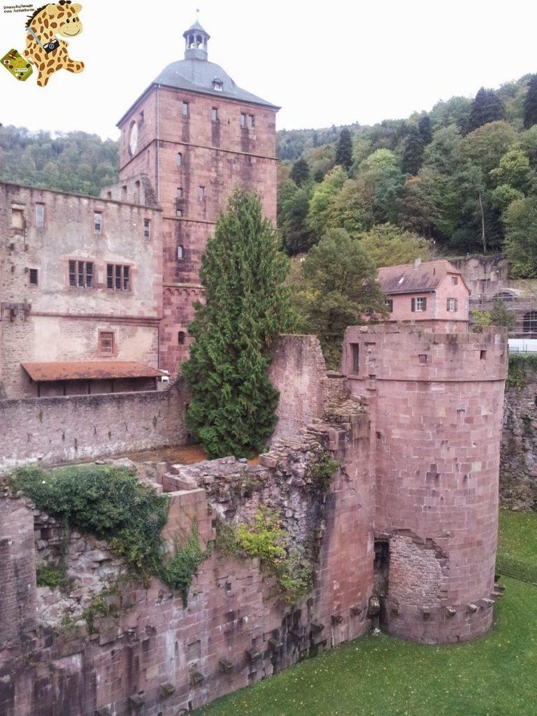 20141022 164331 768x1024 - Qué ver en Heidelberg - Alemania