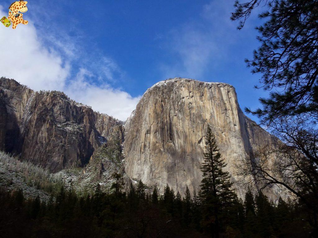 yosemite282029yosemitedeambulandoconartabria 1024x768 - Un día en Yosemite