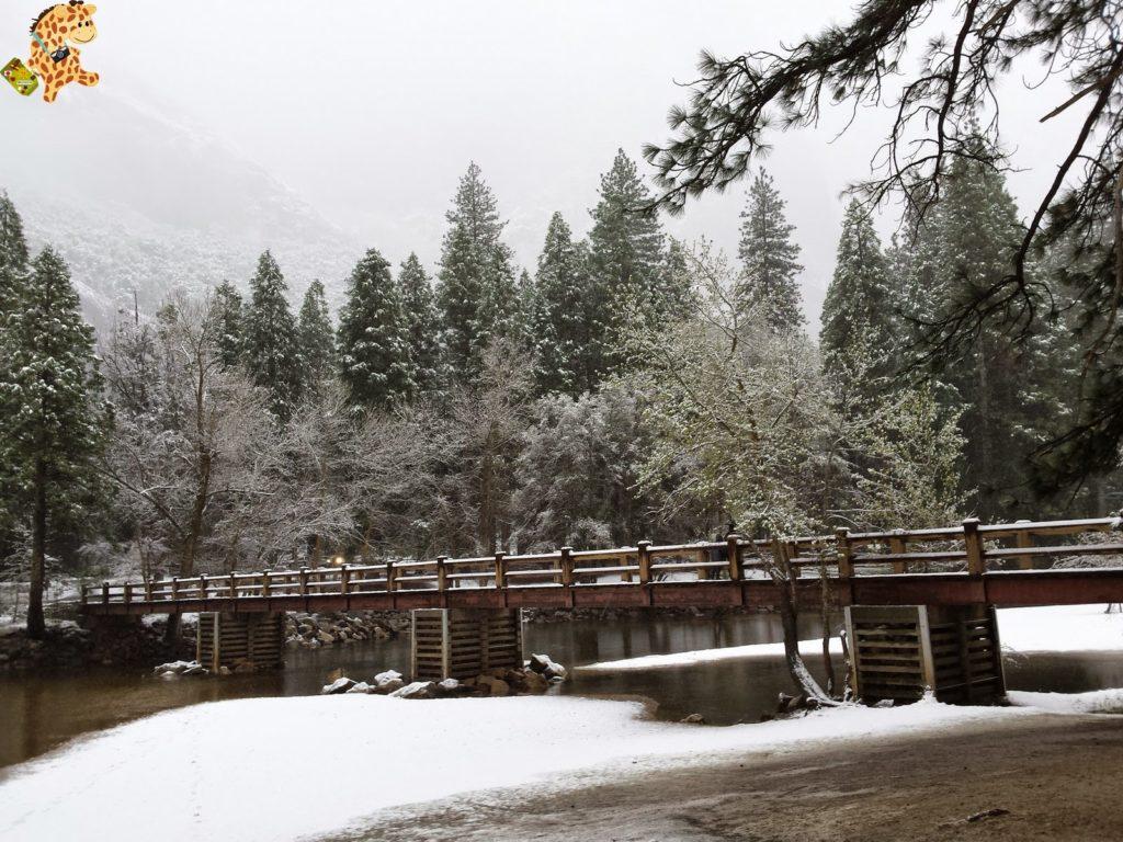 yosemite282129yosemitedeambulandoconartabria 1024x768 - Un día en Yosemite