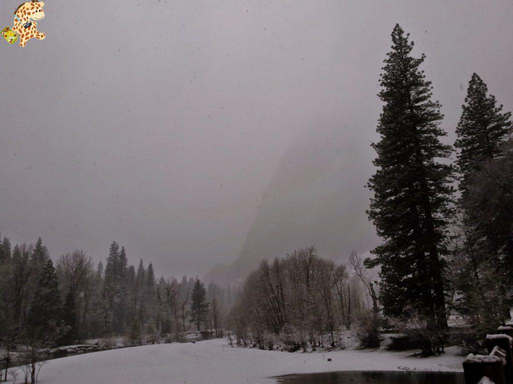 yosemite28329yosemitedeambulandoconartabria 1024x768 - Un día en Yosemite