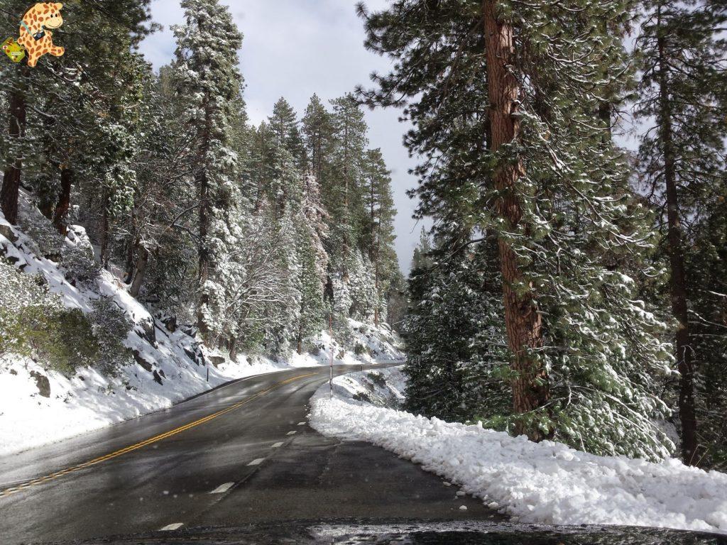 yosemite284929yosemitedeambulandoconartabria 1024x768 - Un día en Yosemite