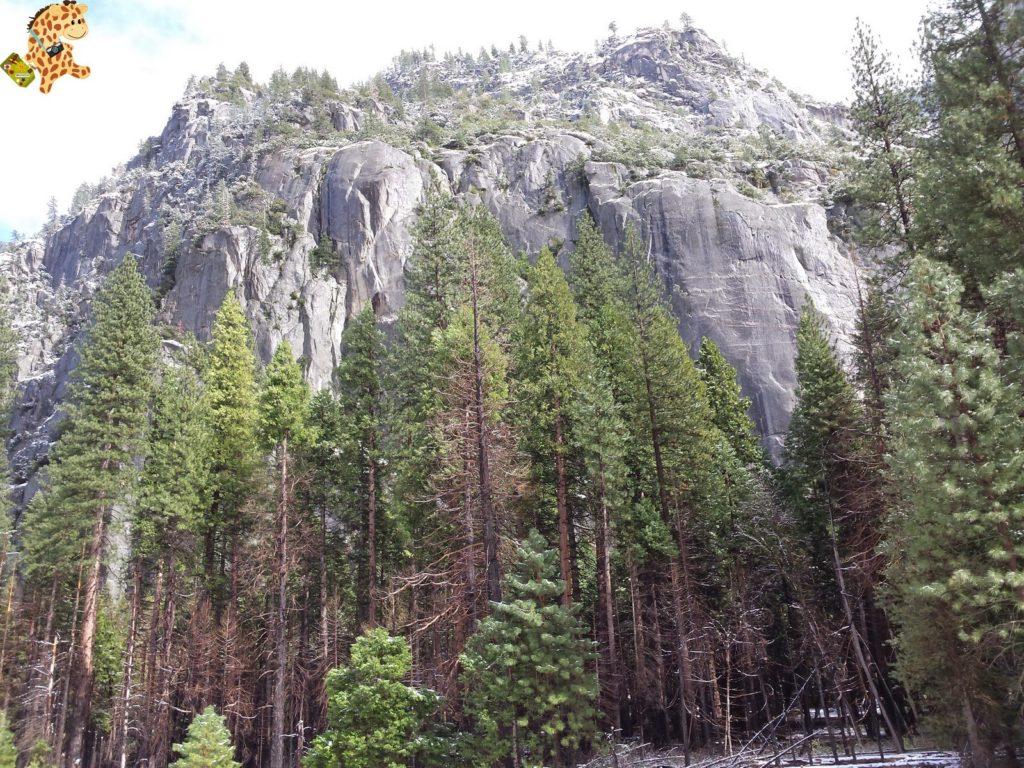 yosemite285229yosemitedeambulandoconartabria 1024x768 - Un día en Yosemite